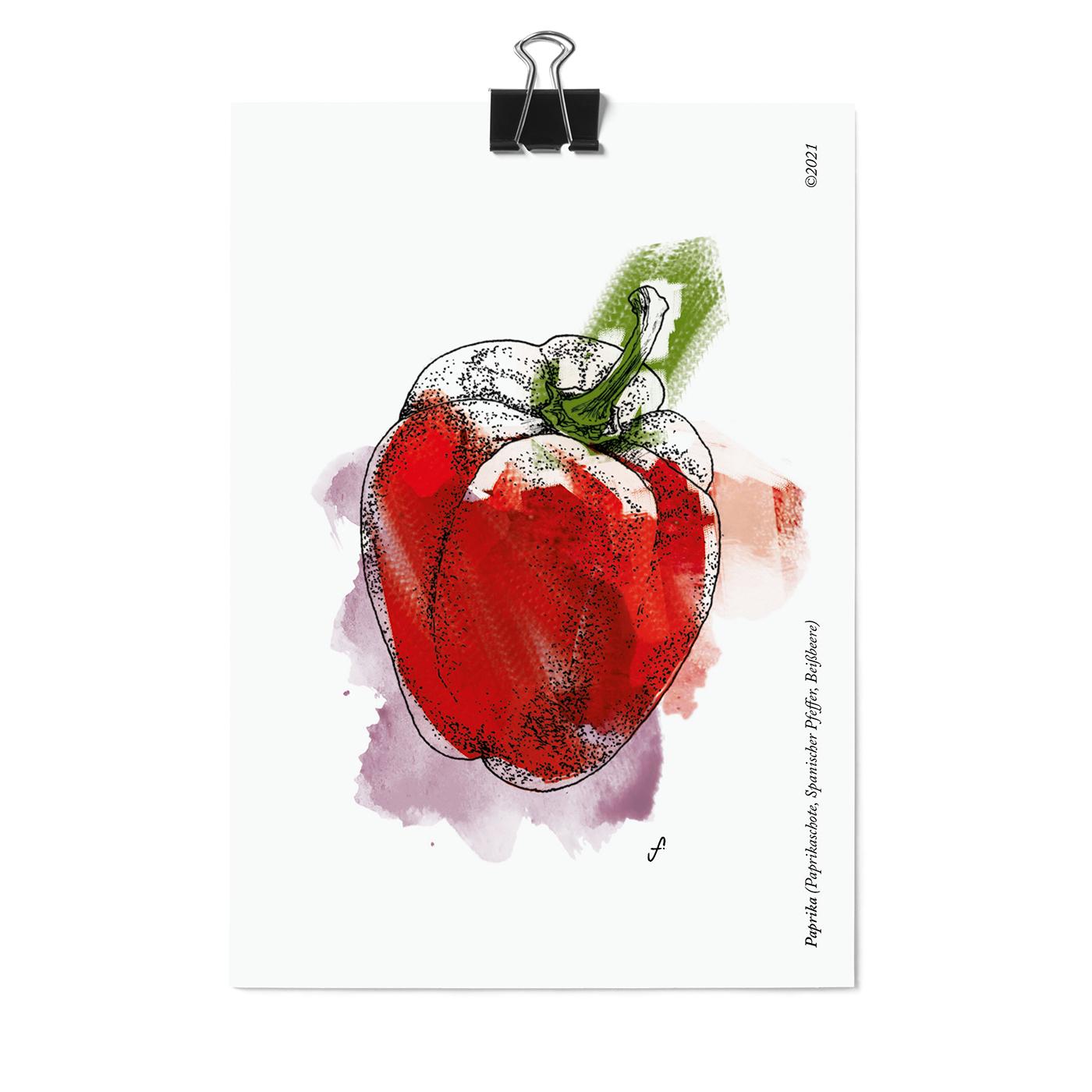 Postkartenset, 16 Obst und Gemüse Postkarten