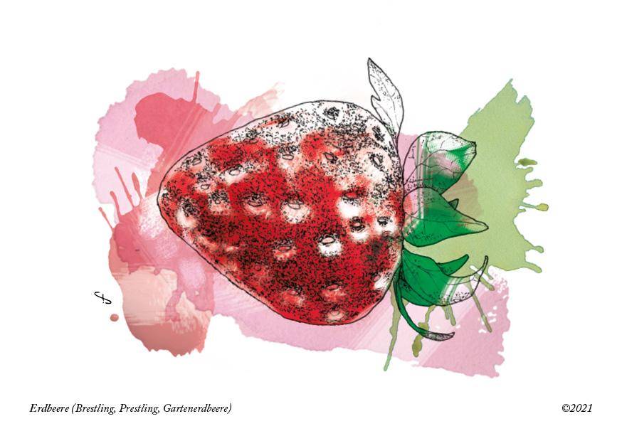 Postkarte,  Erdbeere