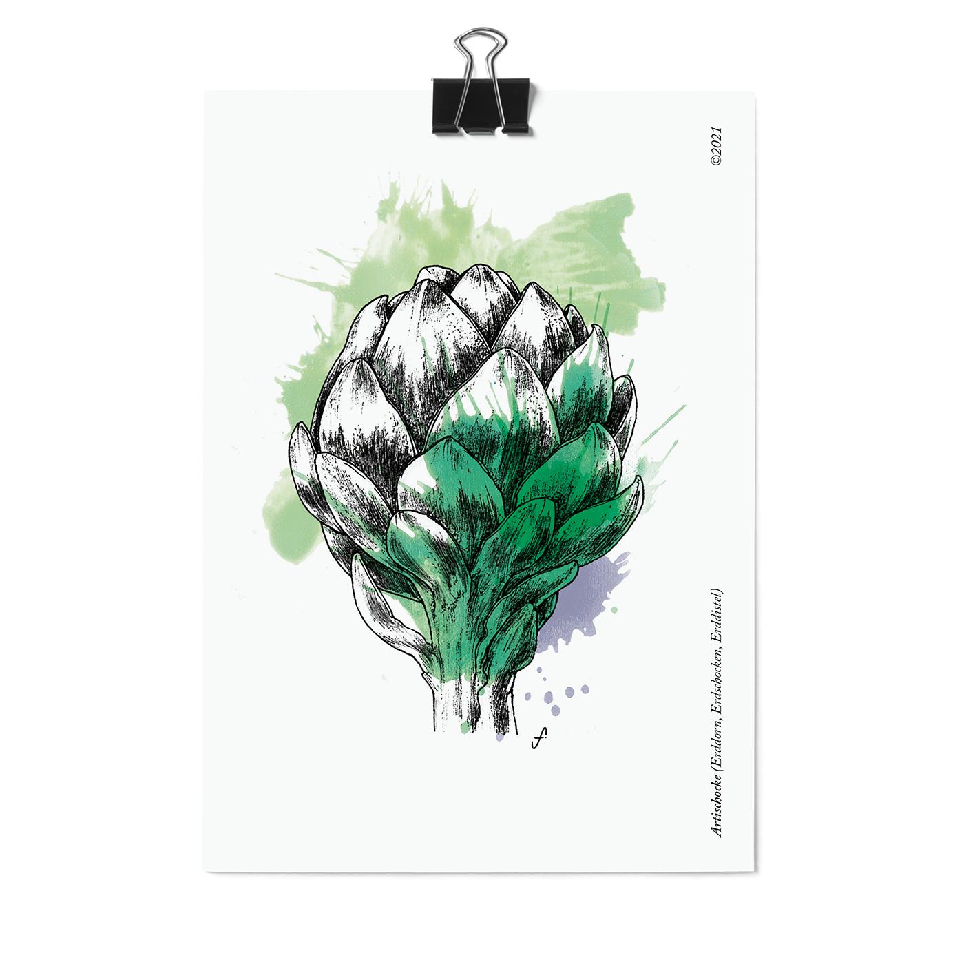Postkarte,  Artischoke