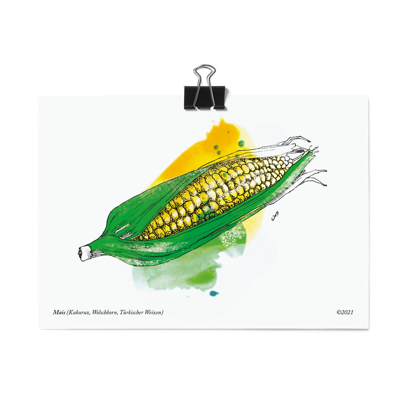 Postkarte, Mais